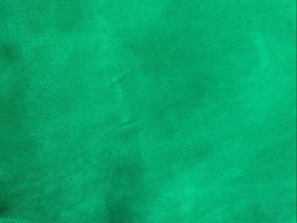 camoscio verde